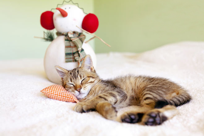 7 errori da evitare che possono compromettere il tuo sonno d'inverno!