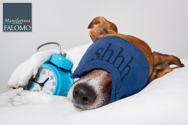Gli animali dormono come noi?