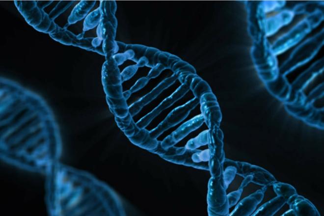 Fattori Rischio Riposo - Genetica