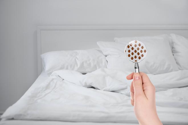 Biancheria da letto: 10 pratici consigli per fare la scelta giusta!