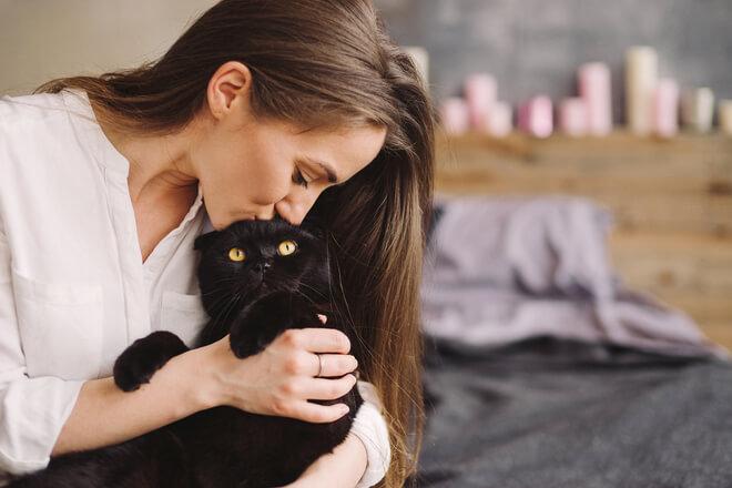 Dormi con il tuo gatto? Ecco cosa c'è da sapere!