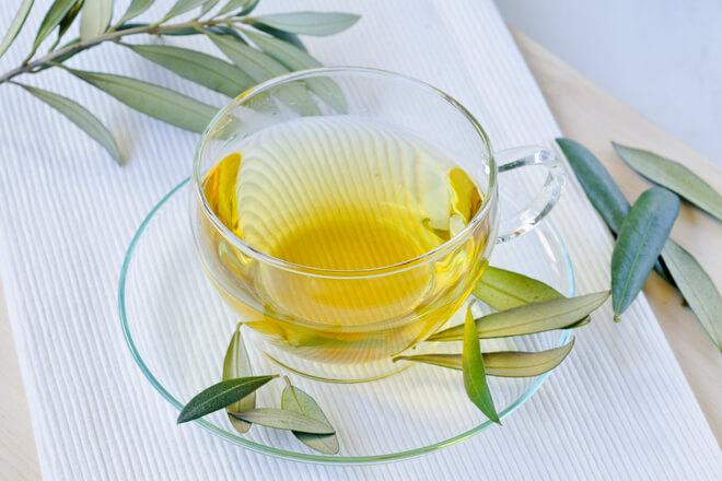 Decotto foglie di ulivo